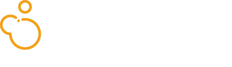 Version 14